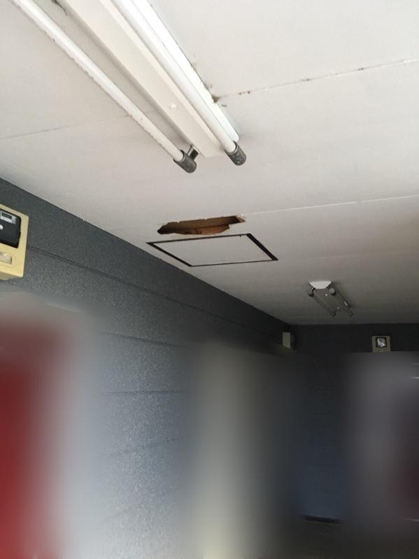 天井修理1